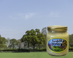 Norfolk Set Honey.jpg